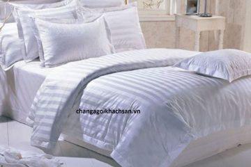 Ruột chăn, ruột gối bông khách sạn cao cấp chất lượng Goldensilk